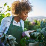 Ron FINLEY: Le développement via le Jardinage