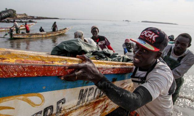 Lutter contre la pèche illicite au Sénégal